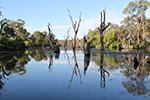 Gunbower Torrumbarry Creek